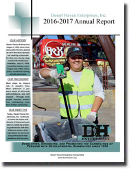 Annual Report for 2016-2017